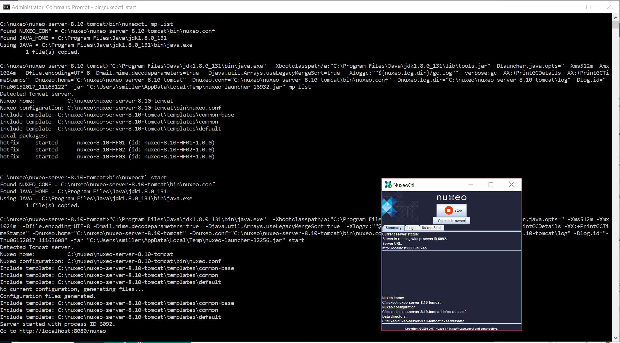 NXP-22552] Under Windows 10 JDK 1 8, tomcat distro cannot bind